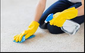 Carpet Cleaning Tips for Stains like Oil and Water
